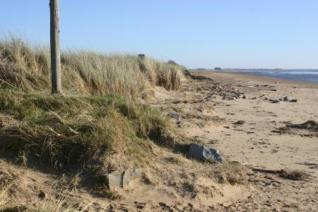 Beach at Carsethorn